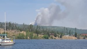 Buffalo Mountain Fire