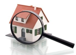 Property Search Emails